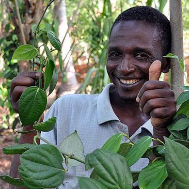 TANZANIA - Țara colorată a condimentelor aromate
