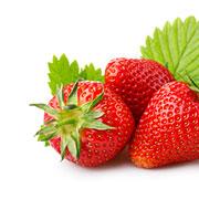 Căpșuni | © SONNENTOR