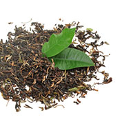 Ceai negru Darjeeling | © SONNENTOR